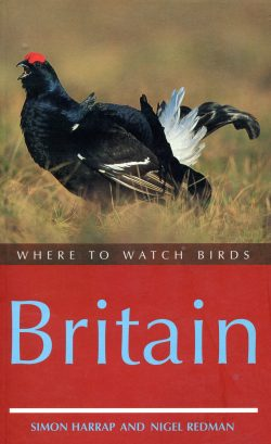 Where to watch birds Britain