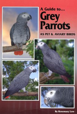 A Guide to Grey Parrots, Soft cover